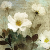 Anemone I Prints by Keith Mallett