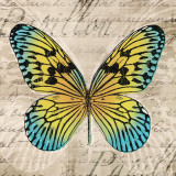Butterflies I Poster by Tandi Venter