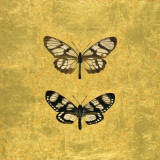 Pair of Butterflies on Gold Prints by Joanna Charlotte