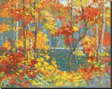 Le bassin Reproduction transf&#233;r&#233;e sur toile par Tom Thomson