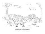 """C'mon guys—birds gotta fly."" - New Yorker Cartoon Premium Giclee Print by Robert Mankoff"