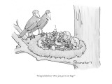 &quot;Congratulations!  Now you get to eat bugs!&quot; - New Yorker Cartoon Premium Giclee Print by Danny Shanahan