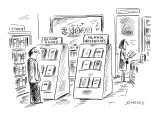 Man in bookstore looks at bookshelves labeled, 'Blank Books,' and 'Blank S… - New Yorker Cartoon Premium Giclee Print by David Sipress