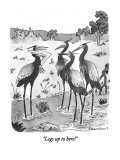 """""""Legs up to here!"""" - New Yorker Cartoon Premium Giclee Print by Danny Shanahan"""