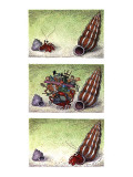 Two column color cartoon showing crab in a small shell walking towards a b… - New Yorker Cartoon Premium Giclee Print by John O'brien