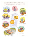 Scientists Discover the Gene for Heterosexuality in Men - New Yorker Cartoon Premium Giclee Print by Roz Chast