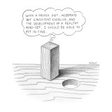 "Square peg looking at round hole thinking ""With a proper diet, moderate bu… - New Yorker Cartoon Premium Giclee Print by Anthony Taber"
