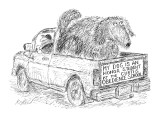 Dog in back of pickup truck which has a bumper sticker that  reads: 'My do… - New Yorker Cartoon Premium Giclee Print by Edward Koren