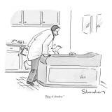 """Now it's broken."" - New Yorker Cartoon Premium Giclee Print by Danny Shanahan"
