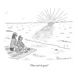 """That can't be good."" - New Yorker Cartoon Premium Giclee Print by Danny Shanahan"