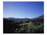 Luana Hills Country Club, Hole 3 Premium Photographic Print by Stephen Szurlej