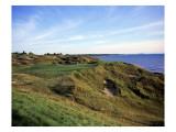 Whistling Straits Golf Club, Hole 12 Regular Photographic Print by Stephen Szurlej