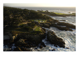 Cypress Point Golf Course, rocky coastline Regular Photographic Print by J.D. Cuban