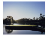 TPC Sawgrass the Stadium Course, Hole 17 Premium Photographic Print by Stephen Szurlej