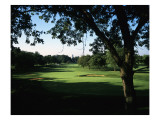 Olympia Fields Country Club North Course, Hole 10 Premium Photographic Print by Stephen Szurlej