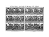 Bobby Jones Wood Shot Premium Photographic Print by George S. Pietzcker