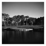 TPC Sawgrass Stadium Course, Hole 17, Black and White Regular Photographic Print by Bill Fields