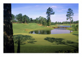Pinehurst Golf Course No. 4, Hole 4 Regular Photographic Print by Dom Furore
