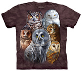Owls T-shirts