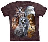 Pöllöt T-paidat