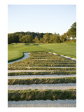 Oakmont Country Club, Hole 3, 'Church Pews' bunker Regular Photographic Print by Stephen Szurlej