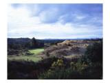 Bandon Dunes Golf Course, Hole 2 Regular Photographic Print by J.D. Cuban