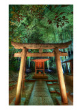 Hidden Temple in Bamboo at Night Premium Photographic Print by Trey Ratcliff