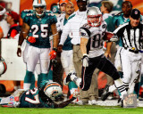 Wes Welker 99 Yard Touchdown Reception 2011 Action Photo
