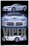 Dodge Viper Masterprint