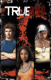True Blood - Comic 6B Masterprint