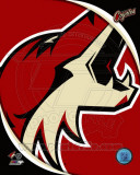 Phoenix Coyotes 2011 Team Logo Photo