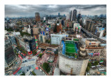 Tokyo from the Air Premium Photographic Print by Trey Ratcliff