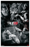 True Blood - Cracked Art Masterprint