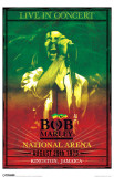Bob Marley - Concert Masterprint