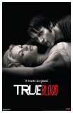 True Blood - It Hurts So Good Masterprint
