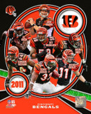 Cincinnati Bengals 2011 Team Composite Photo
