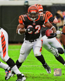 Cedric Benson 2011 Action Photo