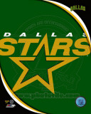 Dallas Stars 2011 Team Logo Photo
