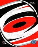 Carolina Hurricanes 2011 Team Logo Photo