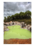 The Green Pool Premium Photographic Print by Trey Ratcliff