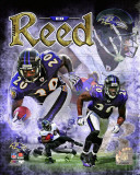 Ed Reed 2011 Portrait Plus Photo