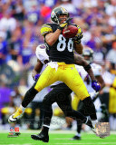 Hines Ward 2011 Action Photographie
