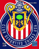 2011 Club Deportivo Chivas Team Logo Foto