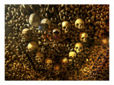 Heart of Skulls Premium Photographic Print by Trey Ratcliff