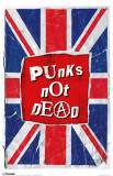 Punks Not Dead Masterprint