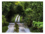 Your Road Ahead Premium Photographic Print by Trey Ratcliff