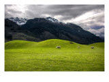 The Soft Hills on the way to Paradise, New Zealand Premium Photographic Print by Trey Ratcliff
