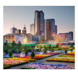 Downtown Dallas from the Flower Market Premium Photographic Print by Trey Ratcliff