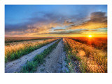 Long Road in Montana Premium Photographic Print by Trey Ratcliff