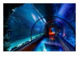 The Secret Underwater Passage Premium Photographic Print by Trey Ratcliff